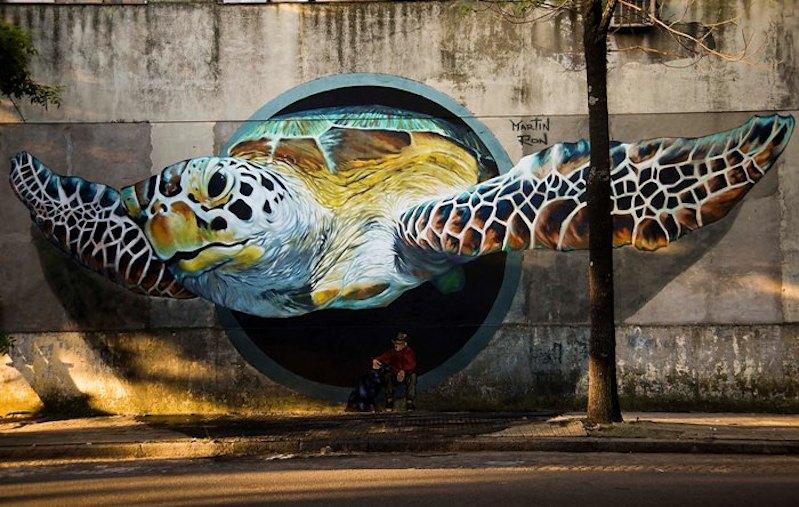 Pic 'o the week: Sea turtle streetart