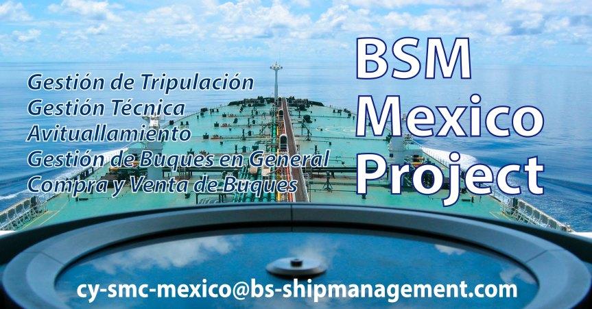 Bsm Mexico Project corregido